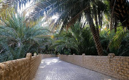 Al Ain Oasis Abu Dhabi UAE
