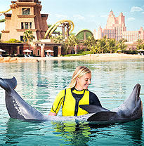 Dolphin Bay - Dubai Attractions