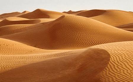 Wahiba Sands Muscat Oman