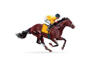 Dubai Polo & Equestrian Club Dubai UAE