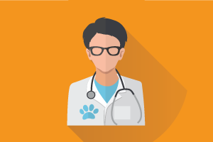 Elite Veterinary Clinic Dubai UAE