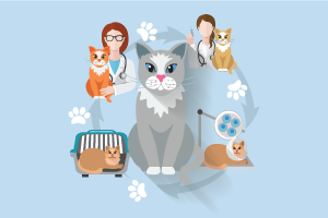 PetCare Veterinary Centre Muscat Oman
