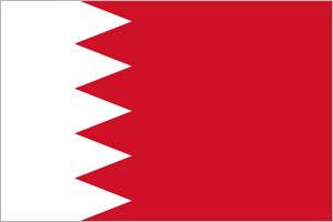 وسائل الإعلام دبي